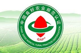 中国良好农业规范GAP认证
