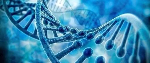 《中华人民共和国人类遗传资源管理条例》公布 明确成果专利权归属问题